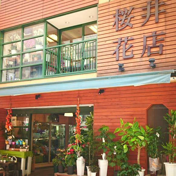桜井花店01